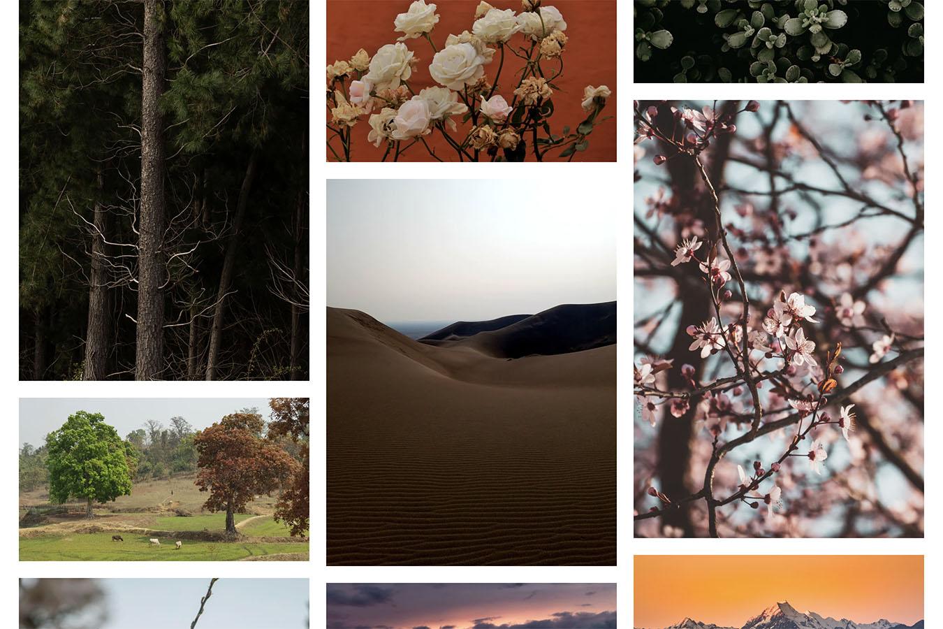 本当に使える高品質な写真素材を無料で商用利用できる超厳選3サイトをご紹介します!